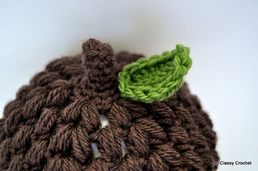 Awesome Acorn Hat Crochet Pattern | Classy Crochet